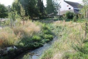 Restauration du Petit Rosne à Sarcelles: Une réussiteprésentée au collauque
